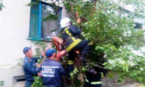 Парень выпал с балкона и застрял на дереве