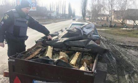 Поліція затримала чоловіка, який незаконно перевозив зрубані дерева