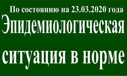 На 23 марта эпидситуация в Павлограде в норме