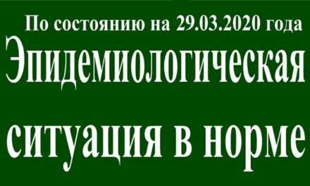 На 29 марта эпидситуация в Павлограде в норме