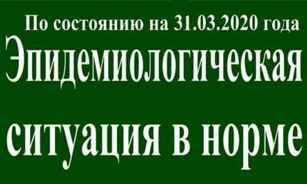 На 31 марта эпидситуация в Павлограде в норме