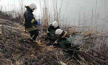 В Павлограде из реки извлекли труп