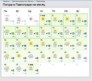 В Павлограде уже до +20. Когда вернутся морозы?