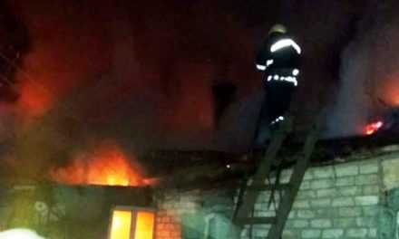 В Павлограде ликвидирован пожар на территории частного домовладения