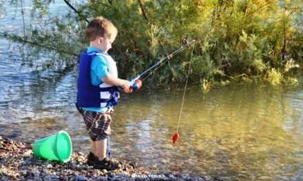 На водоемах Днепропетровщины ограничили вылов рыбы