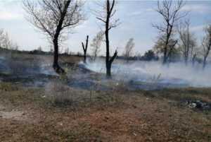 В Павлограде ликвидировано возгорание на площади 1 га