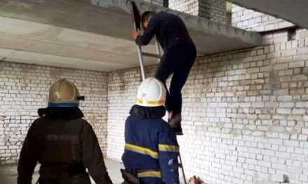 В Павлограде специалисты ГСЧС спасли юного смельчака