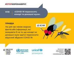 Переносят ли насекомые коронавирус?