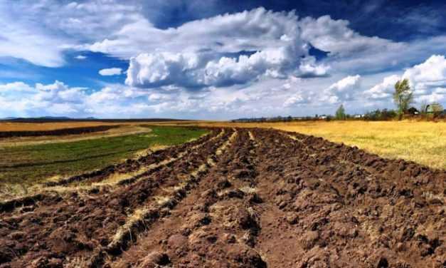 Признать закон о земле неконституционным просят 48 депутатов ВР