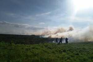 В Павлоградському  районі рятувальники ліквідували масштабну пожежу в екосистемі