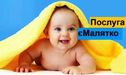 Онлайн-послугу «єМалятко» можна буде отримати у будь-якому ЦНАПі Дніпропетровщини