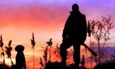 Сезон полювання 2020 на Дніпропетровщині стартує 1 серпня