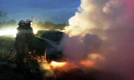 В Павлограде пожарные ликвидировали возгорание легкового автомобиля