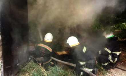 В Павлограде спасатели ликвидировали пожар в гараже