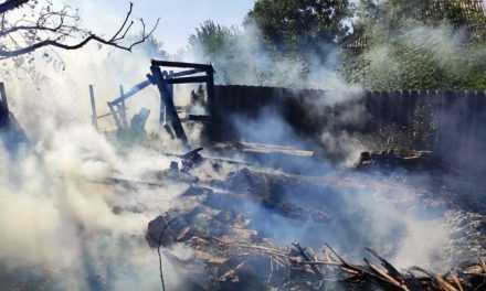 Внаслідок горіння сухостою вогнем знищено господарчу споруду