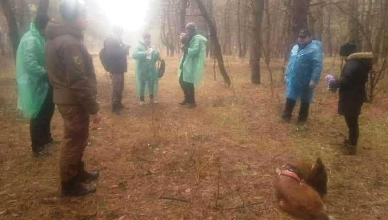 Поиски Ольги Синеокой-Осауленко продолжаются: комментарии кинологов и отца пропавшей