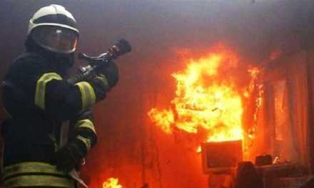 В 2020 году в области произошло более 11 тыс пожаров