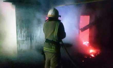 В Павлоградском районе спасатели ликвидировали пожар в хозяйственной постройке