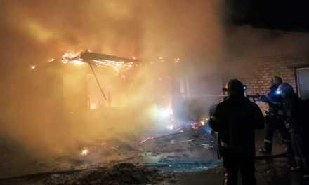 В Павлограде пожарные ликвидировали пожар в частном доме (ВИДЕО)