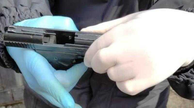 В Терновке полицейские изъяли у 31-летнего местного жителя пистолет
