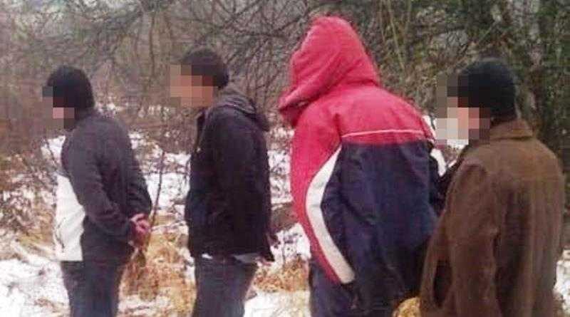 В Павлоградском районе полицейские обнаружили группу нелегалов
