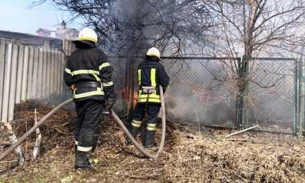 В Павлограде пожарные ликвидировали пожар в частном секторе