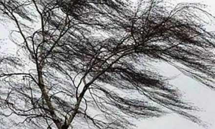 Внимание! Усиление ветра