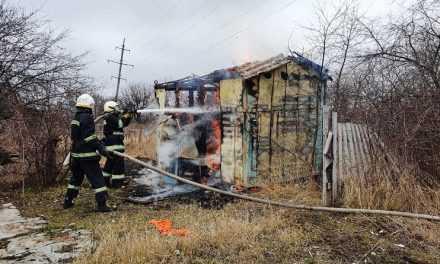 В Павлограде ликвидирован пожар на территории садового общества
