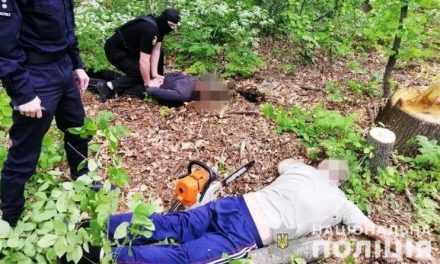 В Павлоградском районе разоблачили преступную группу, которая занималась незаконной вырубкой леса