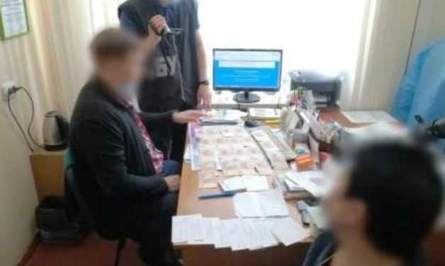 Павлоградский врач попался на выдаче фейковых справок о результатах ПЦР-тестов на коронавирус